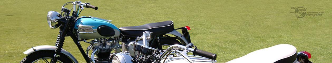 2013 Honda Ruckus | Miles Beyond Ordinary